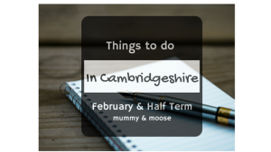 things to do in cambridgeshire